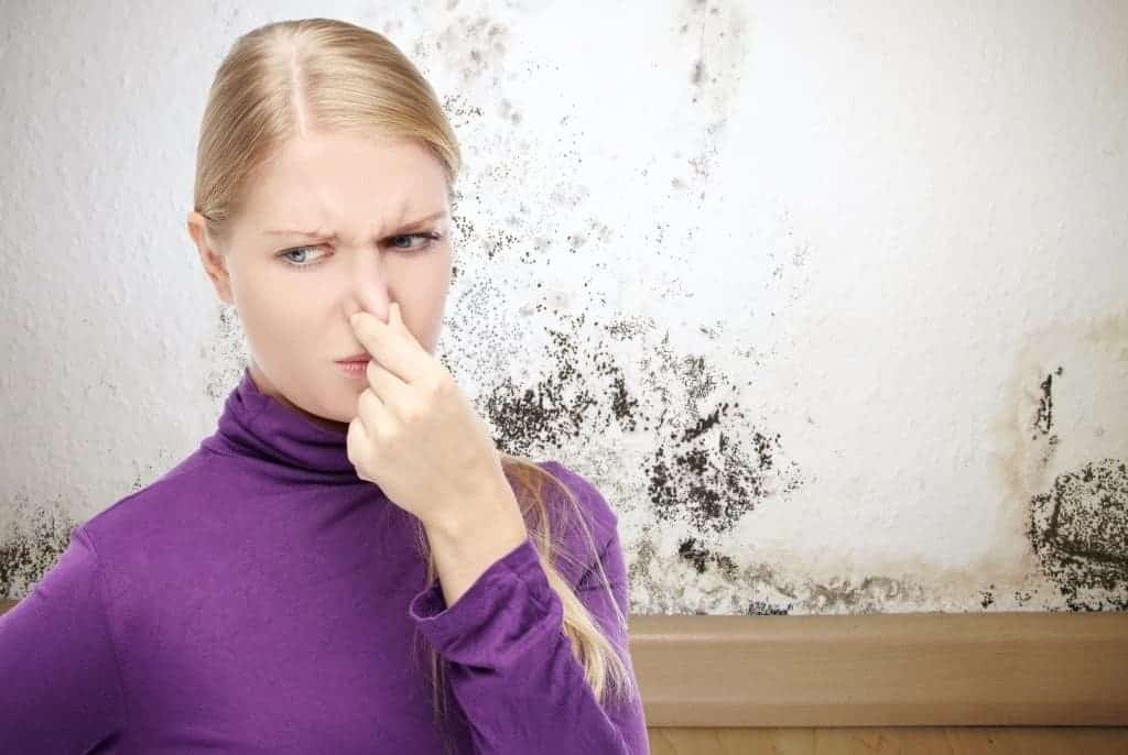 You are currently viewing How to Remove Perfume Smell from Clothes