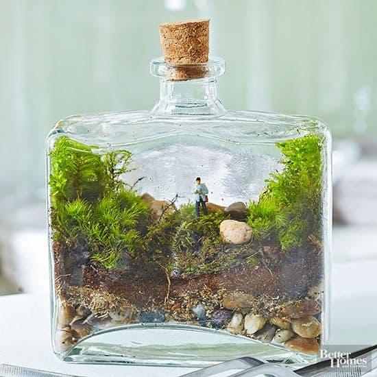 Perfume Bottles to Create Terrariums
