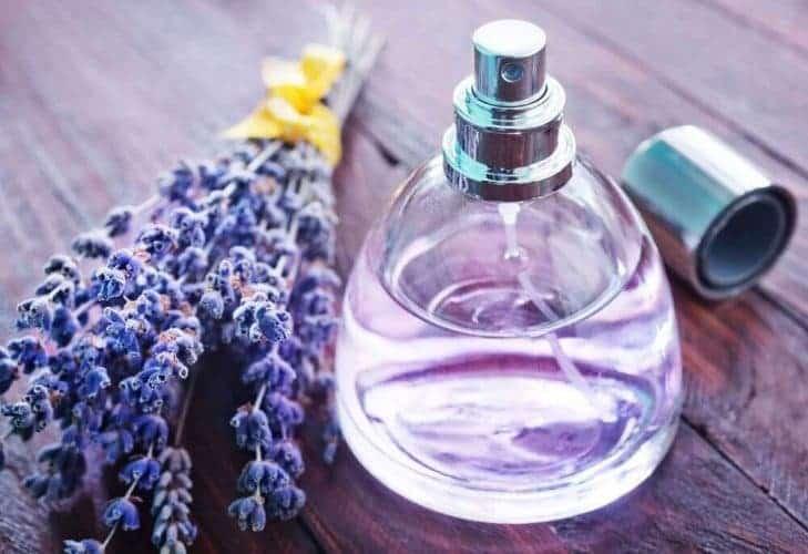 Perfume Bottles to Create Air Fresheners